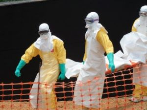 b_385_225_16777215_00_images_news_2014_Others_cherez_virus_ebola.jpg